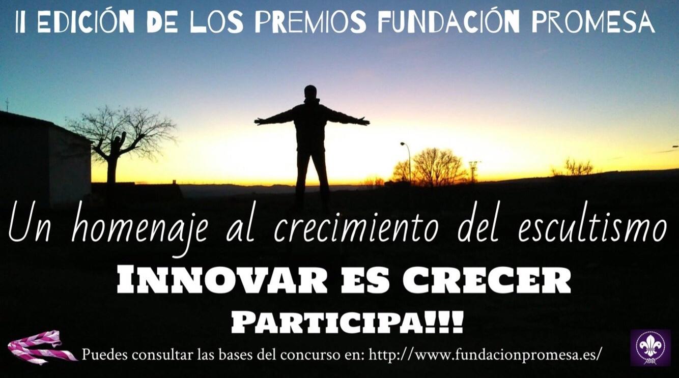 Abierta la II Edición de los Premios Fundación Promesa