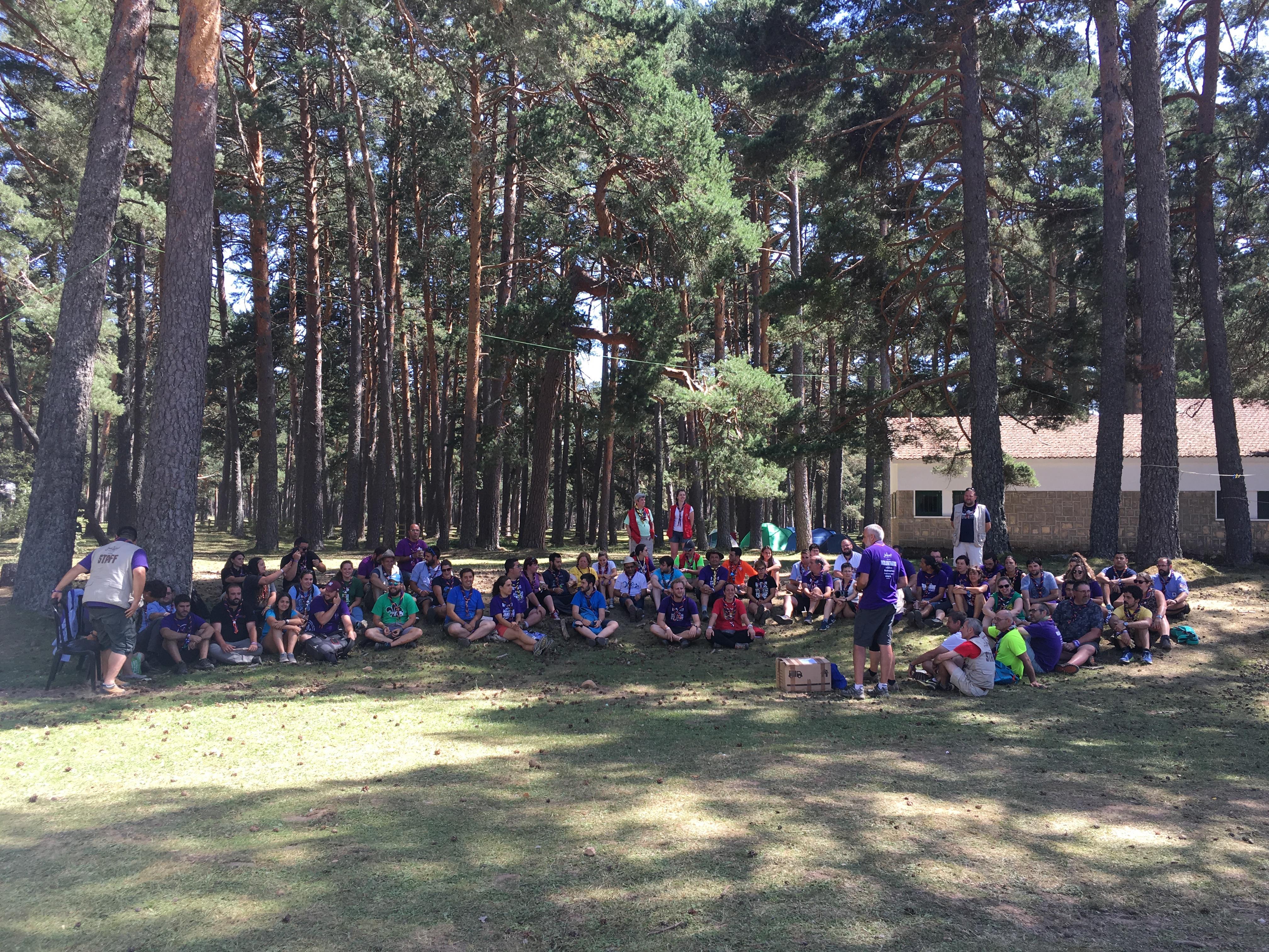 Los grupos Scouts